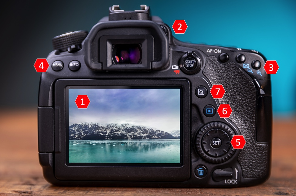 Get to know your Canon Camera by learning what each button and dial does on the rear of your camera.